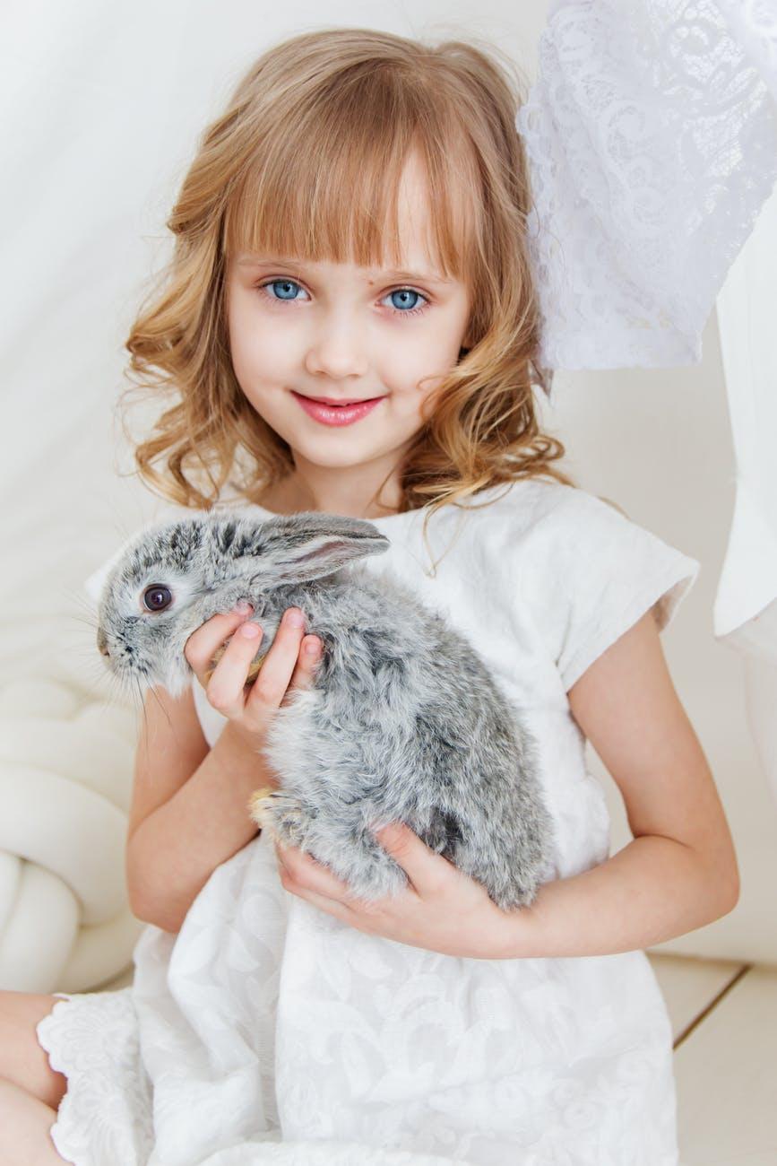 smiling girl holding gray rabbit